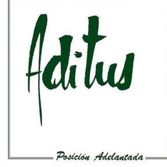 Carátula del disco Posición adelantada de Aditus (1983)